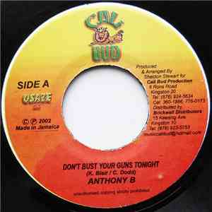 Anthony B / Flash  - Don't Bust Your Guns Tonight / Not Because We Hada Fight download free